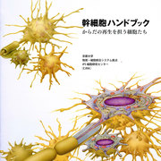 IPS-stem-cell-HB-cover.jpg
