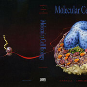 molecular-call-biology.jpg